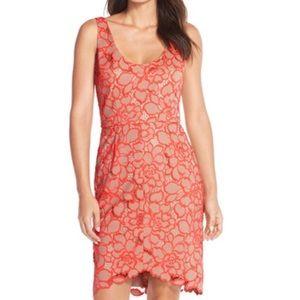 Trunk Turk size 8 dress